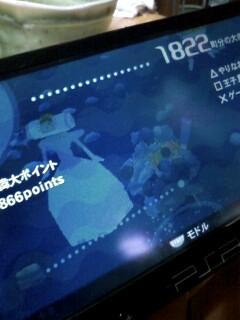 20080706_5.jpg